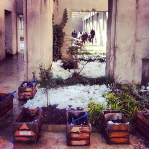 parco dora neve hortus conclusus 1