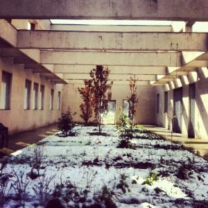 parco dora hortus neve